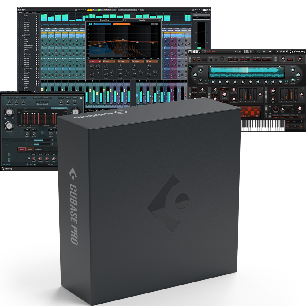 Steinberg Cubase Pro 10.5 Music Production Software DAW (47657)